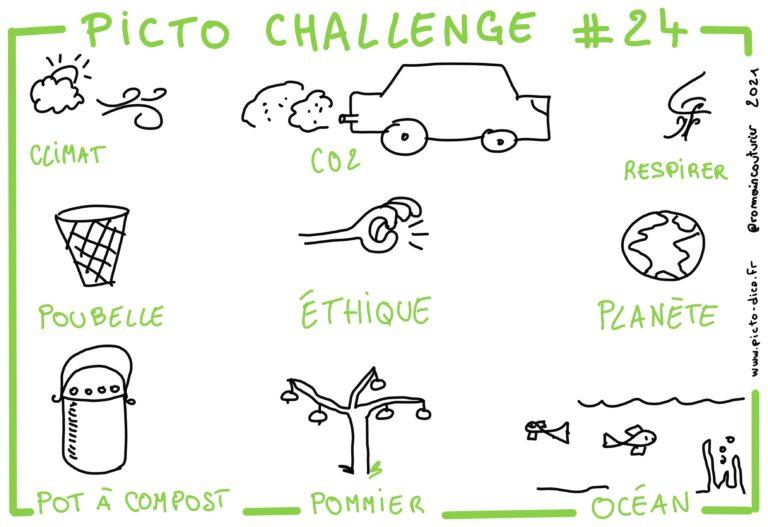 Picto Challenge 24