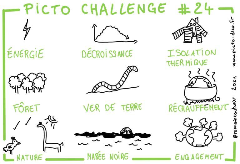 Picto Challenge 24_2